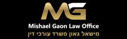 עורך דין הוצאה לפועל מישאל גאון